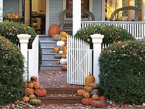 Pumpkin_curb_l